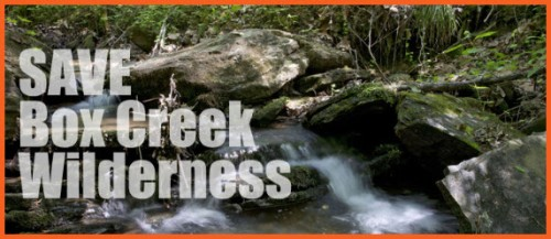 Save Box Creek Wilderness