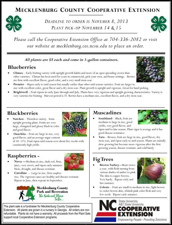 Meck Extension 2013 Plant Sale