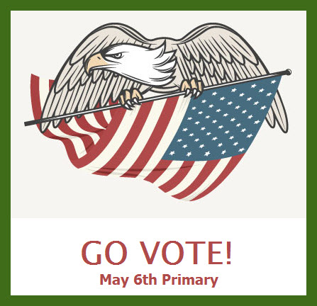Go Vote May 6 Primary