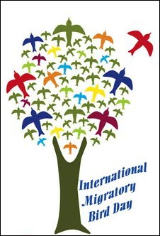 International migratory bird day IMBD EA logo